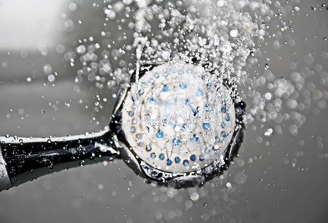 shower head heater