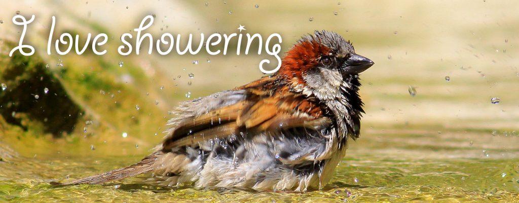 i love showering